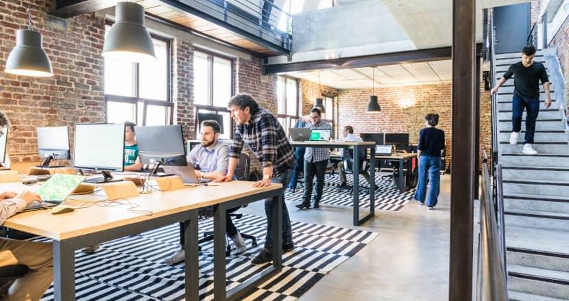 HR in startup